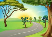 image of long winding road  - Illustration of a long winding road at the forest - JPG