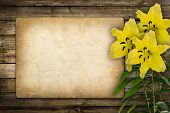 Card For Invitation Or Congratulation With Yellow Lily Flower