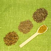 picture of fenugreek  - Set of spices on green leaf - JPG