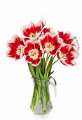 Beautiful Red Tulips Flowers Bouquet In Vase Isolated On White Background