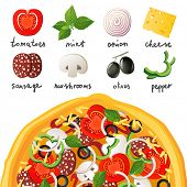 Pizza and ingredients for pizza