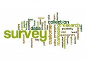 picture of collate  - Survey word cloud image with hi - JPG