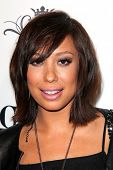 LOS ANGELES - FEB 15:  Cheryl Burke at the Paris Hilton Birthday Party, at Greystone Manor on February 15, 2014 in Los Angeles, CA