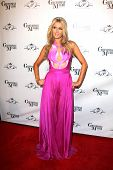 LOS ANGELES - FEB 15:  Paris Hilton at the Paris Hilton Birthday Party, at Greystone Manor on Februa
