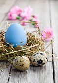 image of quail egg  - Easter eggs in nest on a wooden background - JPG
