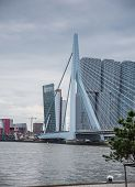 Erasmus Bridge Rotterdam, Netherlands