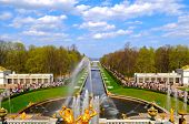 picture of samson  - The View Of Samson Fountain And Gulf In Peterhof - JPG