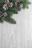 Winter background border of fir and snow covered pine cones over light weathered wood.