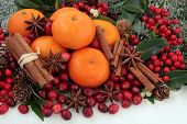 Cranberry and mandarin orange christmas fruit with cinnamon and star anise spice, holly, mistletoe,
