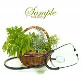 Fresh herbs in a basket and stethoscope