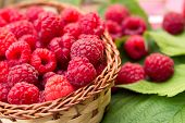 Sweet Organic Raspberries In A Basket