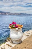 image of hydra  - Colourful pink and white flowers in white clay pot overlooking the Saronic Gulf in Hydra island in the Aegean Sea Greece - JPG