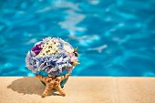 Flowers Starfish Shell Pool