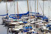 foto of bayou  - Yachts and sailboats moored in a bayou in Tacoma Washington - JPG