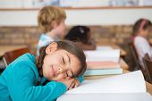 Sleeping pupil sitting at her desk at the elementary school