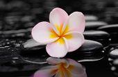 Zen pebbles. Stone spa and spa concept.