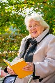 stock photo of 70-year-old  - old pensioner reading a book in the park - JPG