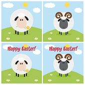 Ram And Sheep Greeting Card Modern Flat Design. Collection Set