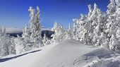pic of colorado high country  - A cold wintery scene of Colorado - JPG