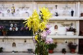 pic of tombstone  - flowers over a cemetery tombstones blurred background - JPG