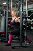 Girl Lifts Weights On Training Apparatus