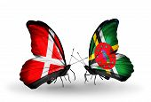 Two Butterflies With Flags On Wings As Symbol Of Relations Denmark And Dominica
