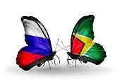 Two Butterflies With Flags On Wings As Symbol Of Relations Russia And Guyana