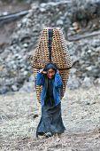 Tibetan People In Nepal