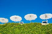 White sun beach umbrellas (parasol)