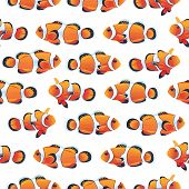 Anemonefish (Clownfish) shoal white seamless vector pattern