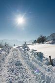 huge truck tracks in snow at austrian winter landscape