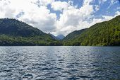 Lake Alpsee, With Swans, Bavarian Alps, Germany.