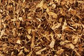 pic of tobacco smoke  - Dry smoking tobacco close - JPG
