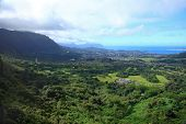 image of nu  - View of the lush forest and ocean from Nu - JPG