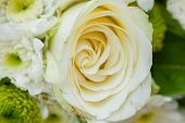 stock photo of trillium  - bouquet with roses setup for wedding ceremony - JPG