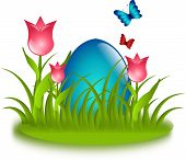 Blue Egg In Grass With Tulips