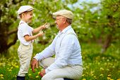 stock photo of grandpa  - happy grandson and grandpa having fun in spring garden blowing dandelions - JPG