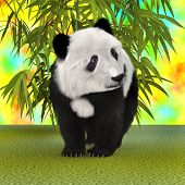 pic of panda bear  - 3D digital render of a panda bear and green bamboo plants on a colourful background - JPG