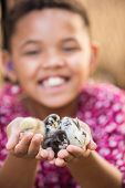 foto of baby chick  - Cute African female child with baby chicks - JPG