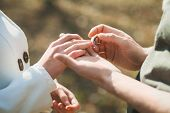 Постер, плакат: Wedding Rings Hands Of Bride And Groom