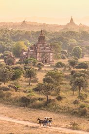 foto of carriage horse  - Horse carriage an a dirt road among temples of Bagan - JPG