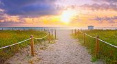 Beach path at sunrise in Miami BEach Florida poster