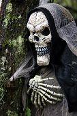 Hooded Skeleton