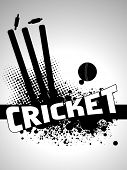 Abstract grunge Cricket Hintergrund mit Stempel und Leder Ball, vector illustration