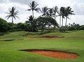 Tropical Hawaiian Golf Course