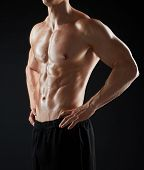 sport, bodybuilding, fitness and people concept - close up of young man or bodybuilder with bare tor poster