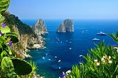 Capri Coast View With The Faraglioni Rocks, Flowers And Boats In The Blue Sea, Italy poster