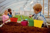 Testing Soil. Small Gardener Testing Soil In Greenhouse. Farm Expert Child Testing Soil. Testing Soi poster