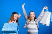Shopping Of Her Dreams. Happy Children In Shop With Bags. Shopping Day Happiness. Sisters Shopping T poster