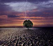 Gebrochene Land und der Blitzschlag auf dem einzigen Baum